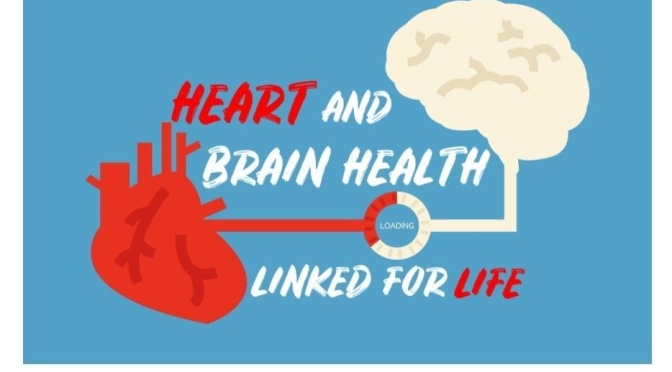 OPINION: HEART AND BRAIN HEALTH ARE LINKED FOR LIFE