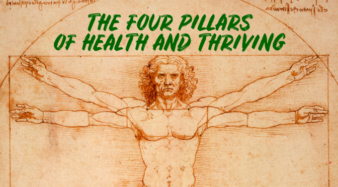 "OPINION: THE "" FOUR PILLARS OF HEALTH AND THRIVING"""