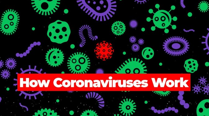 "HEALTH VIDEOS: ""HOW CORONAVIRUSES WORK"""