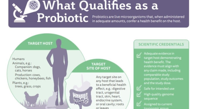"RESOURCES: ""WHAT ARE PROBIOTICS?"" (INFOGRAPHIC)"