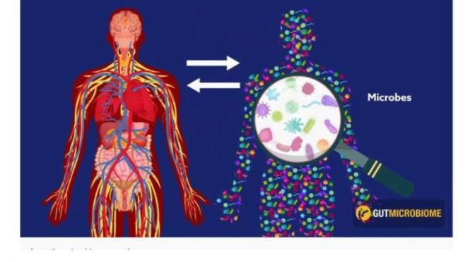 "HEALTH VIDEOS: ""YOU HAVE THE GUT MICROBIOME YOU DESERVE"" (CAMBRIDGE)"