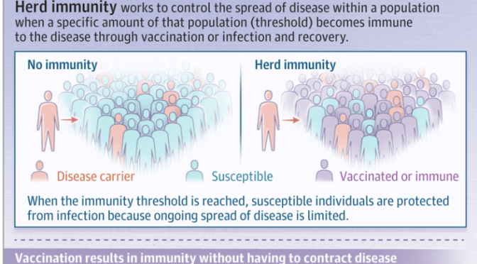 INFOGRAPHIC: 'WHAT IS HERD IMMUNITY?' – ACHIEVING IT WITH COVID-19 (JAMA)