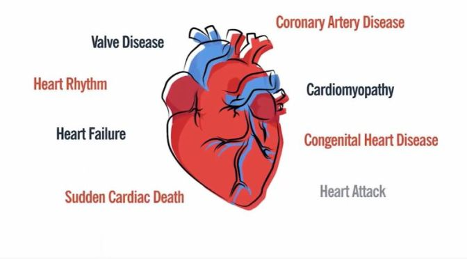 HEART DISEASE: TYPES & RISK FACTORS (CLEVELAND CLINIC)