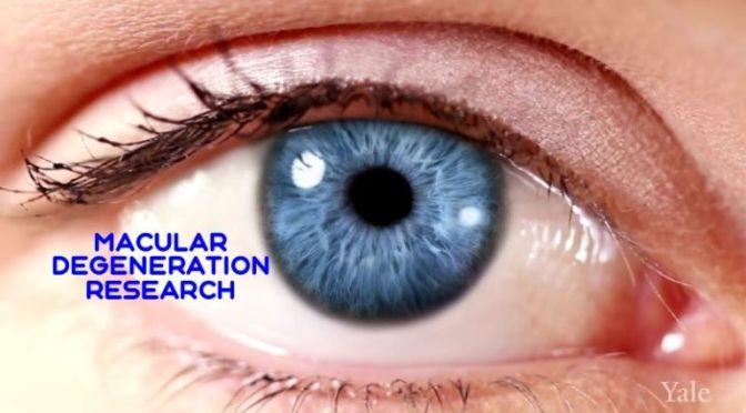 MEDICAL VIEWS: 'MACULAR DEGENERATION RESEARCH'