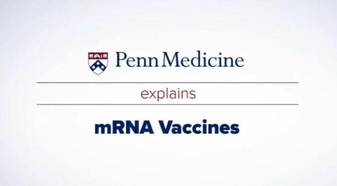 COVID-19: PENN MEDICINE EXPLAINS MRNA VACCINES