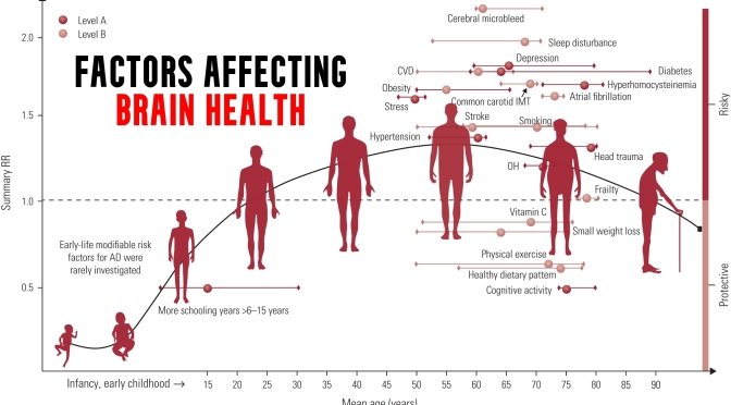 INFOGRAPHIC: ENHANCING BRAIN HEALTH ACROSS AN INDIVIDUAL'S LIFESPAN