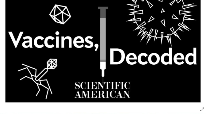 MEDICINE: HOW VACCINES ACTUALLY WORK (VIDEO)