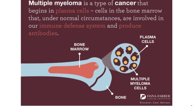 Cancers: What Is Multiple Myeloma? (Mayo Clinic)
