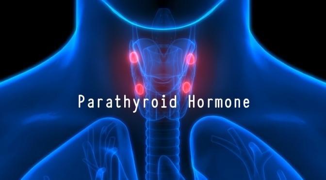 DR. C'S JOURNAL: BENEFITS OF PARATHYROID HORMONE